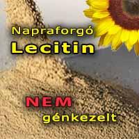 napraforgó lecitin hatása